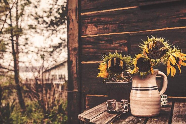 Droopy Flowers.jpg