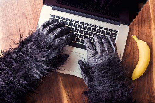 gorilla-computer